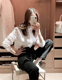 Half lace blouse